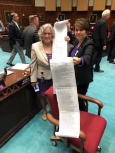 House Reps. Charlene Fernandez and Pamela Powers Hannley