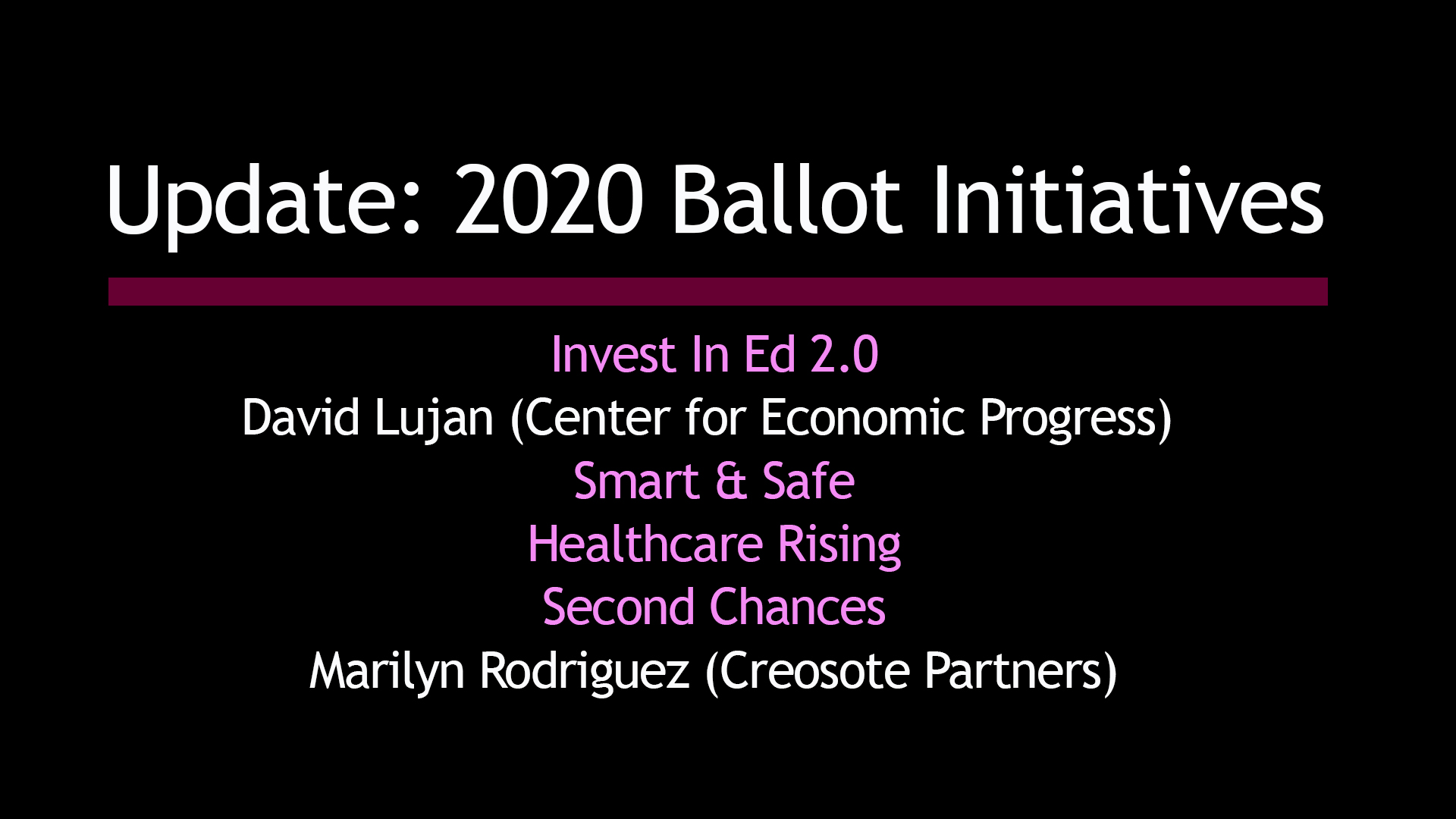 2020 Citizens Initiatives Explained at LD9 Town Hall (video)