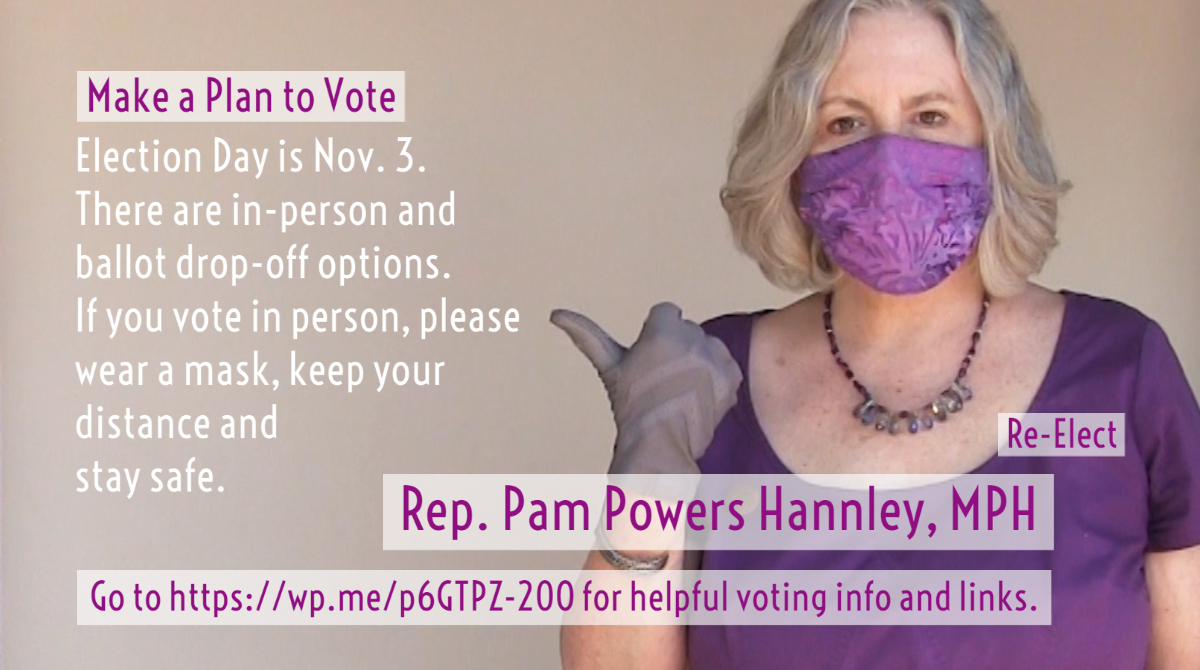 Rep. Pam Powers Hannley