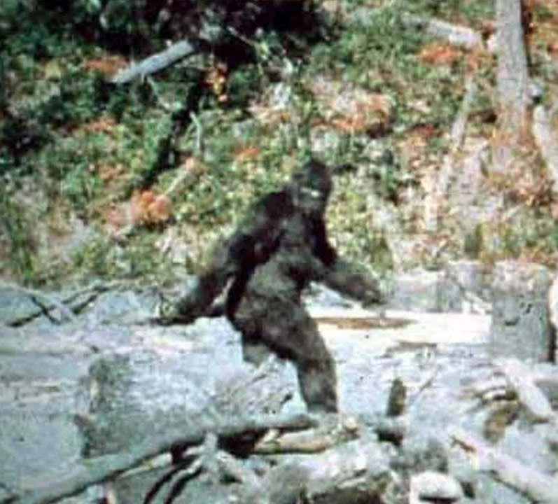 AZ GOP Search For 'Massive' Voter Fraud Is Equivalent Of Searching For Bigfoot